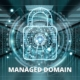 managed domain